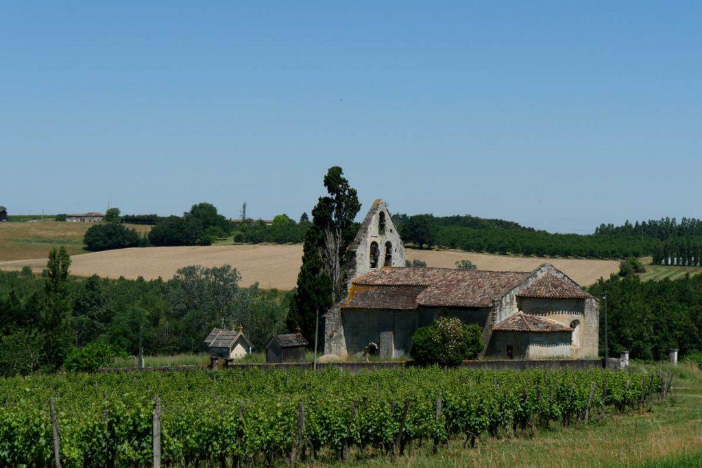 Paysage de vignes - Sud ouest